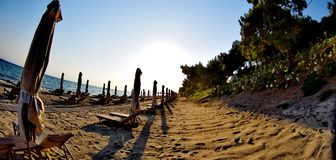 Sdrai in una spiaggia Fotografie Stock Libere da Diritti