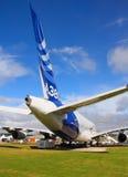 Seção de cauda maciça dos aviões Imagens de Stock