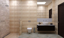 Seção do banheiro e do wc foto de stock