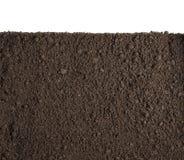 Seção do solo ou da sujeira isolada no fundo branco Foto de Stock Royalty Free