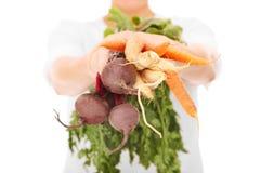 Seção mestra de uma mulher que guarda vegetais foto de stock