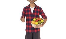 Seção mestra do fazendeiro que guarda uma cesta dos frutos Imagens de Stock