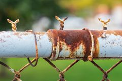 Seção particularmente oxidada de uma cerca oxidada do elo de corrente fotos de stock royalty free
