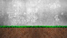 Seção transversal da grama e do solo, no fundo cinzento do muro de cimento fotografia de stock