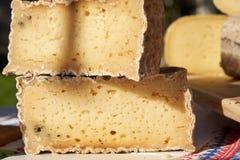 Seção transversal de um bloco de queijo com molde fotografia de stock royalty free