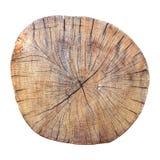 Seção transversal rachado resistido velho do tronco de árvore Imagem de Stock