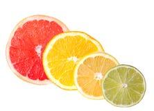Seções dos citrinos Foto de Stock
