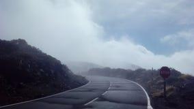 señal de parada de niebla del camino Imagen de archivo libre de regalías
