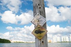 Señal de peligro de cocodrilos en Cancun Imagen de archivo libre de regalías