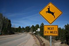 Señal de peligro de los ciervos Fotografía de archivo libre de regalías