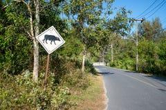 señal de peligro del búfalo del tráfico Fotos de archivo libres de regalías