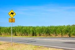 Señal de peligro del camino del canguro a lo largo del camino rural Fotografía de archivo