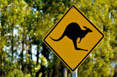 Señal de peligro del canguro Imágenes de archivo libres de regalías