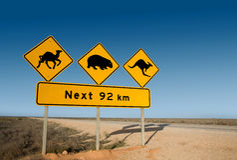 Señal de peligro del canguro, del wombat y del camello Australia Imagen de archivo