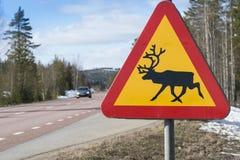 Señal de peligro del reno Suecia foto de archivo libre de regalías