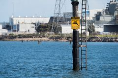 Señal de peligro del santuario del delfín, Adelaide portuaria foto de archivo