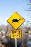 Señal de tráfico amarilla sobre tortugas Foto de archivo