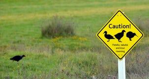Señal de tráfico en el santuario abierto Nueva Zelanda de Tawharanui Fotos de archivo