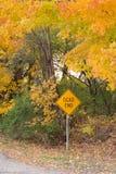 Señal de tráfico en otoño imagenes de archivo