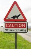 Señal de tráfico en una advertencia del camino del campo para cruzar de las nutrias Imagenes de archivo