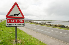 Señal de tráfico en una advertencia del camino del campo para cruzar de las nutrias Fotos de archivo libres de regalías