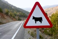 Señal de tráfico europea, vacas en el camino Fotos de archivo libres de regalías