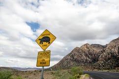 Señal de tráfico para la travesía de la tortuga de la tortuga de desierto, conductores amonestadores de la presencia animal foto de archivo libre de regalías