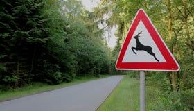 Señal de tráfico - travesía de los ciervos Foto de archivo libre de regalías