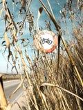 Señal de tráfico de una bici en un campo de maíz un día claro foto de archivo