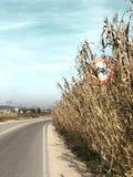 Señal de tráfico de una bici en un campo de maíz un día claro imagen de archivo