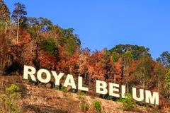 Señal real de la selva tropical de Belum imagen de archivo