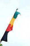 Señala banderas por medio de una bandera Imágenes de archivo libres de regalías