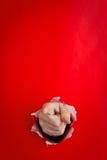 Señalar la mano a través del agujero Imagen de archivo libre de regalías