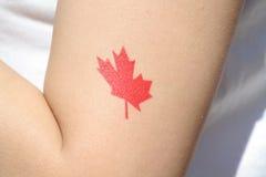 Señale la impresión del brazo por medio de una bandera Imágenes de archivo libres de regalías