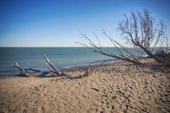 Señale la playa en la caída en el tiempo de la puesta del sol, lago del parque nacional de Pelee Imágenes de archivo libres de regalías