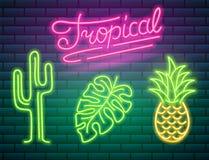 Señales de neón e iconos Cactus y piña, plantas tropicales, palmeras y hojas Fije de letrero brillante de la noche stock de ilustración