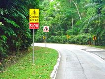 Señales de tráfico - bosque Imagenes de archivo