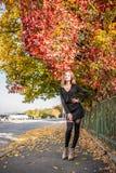 Señora bastante elegante de los jóvenes que presenta cerca de árbol del colourfull en el otoño imágenes de archivo libres de regalías