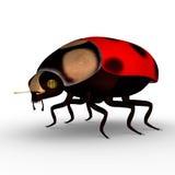 Señora Bug libre illustration