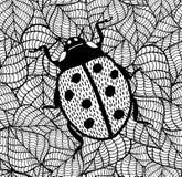 Señora Bug Ejemplo decorativo del insecto del garabato en fondo de las hojas Fotografía de archivo