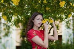 Señora caucásica que celebra la flor amarilla en el patio Fotos de archivo