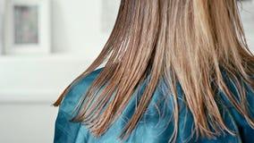 Señora con el pelo marrón claro recto mojado en salón de la peluquería Parte trasera del primer almacen de video
