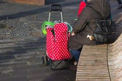 señora con la carretilla roja imágenes de archivo libres de regalías