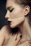 Señora con maquillaje hermoso en un velo Foto de archivo