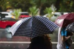 Señora con un paraguas en la lluvia Fotos de archivo libres de regalías