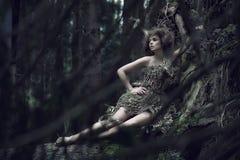 Señora de Eco que miente en el tronco Foto de archivo