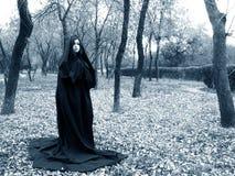 Señora de la madera Fotografía de archivo libre de regalías