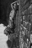Señora de moda Fotografía de archivo libre de regalías