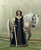 Señora del castillo ilustración del vector