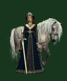 Señora del castillo CA ilustración del vector